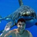 requin et ado